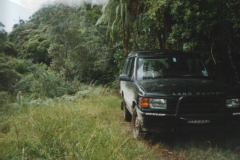 TR00406